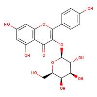 kaempferol 3-O-beta-D-galactoside (CHEBI:31742)