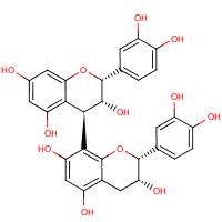 procyanidin B2 (CHEBI:75632)