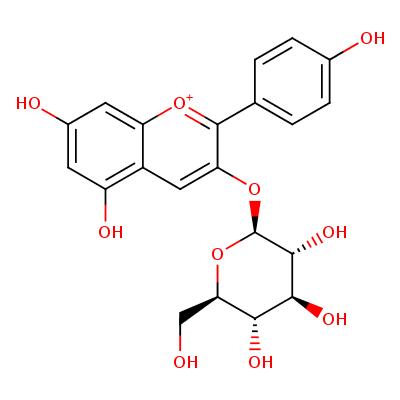pelargonidin 3-O-beta-D-glucoside (CHEBI:31967)