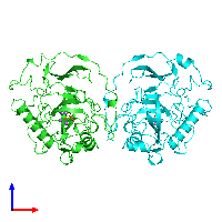 PDB 117e coloured by chain and viewed from the front.