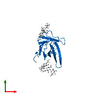 PDB 1ah1 contains 1 copy of Cytotoxic T-lymphocyte protein 4 in assembly 1. This protein is highlighted and viewed from the top.