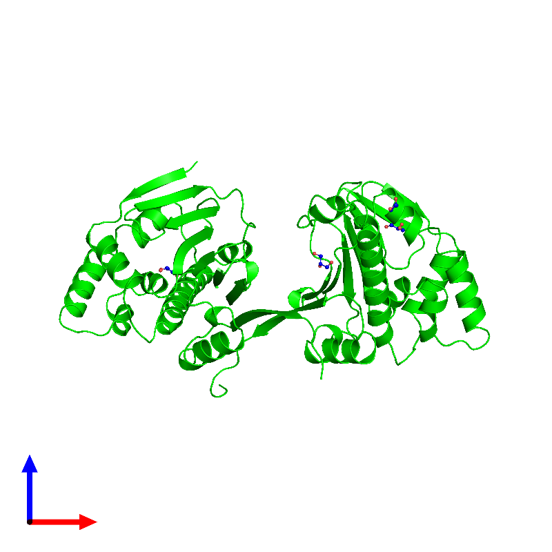 <div class='caption-body'><ul class ='image_legend_ul'> Dimeric assembly 1 of PDB entry 1ah8 coloured by chemically distinct molecules and viewed from the front. This assembly contains:<li class ='image_legend_li'>2 copies of ATP-dependent molecular chaperone HSP82</li><li class ='image_legend_li'>4 copies of GLYCEROL</li></ul></div>