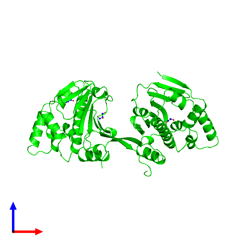 <div class='caption-body'><ul class ='image_legend_ul'>The deposited structure of PDB entry 1ah8 coloured by chemically distinct molecules and viewed from the front. The entry contains: <li class ='image_legend_li'>2 copies of ATP-dependent molecular chaperone HSP82</li><li class ='image_legend_li'>There is 1 non-polymeric molecule<ul class ='image_legend_ul'><li class ='image_legend_li'>4 copies of GLYCEROL</li></ul></li></div>