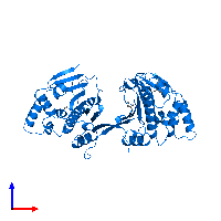 PDB 1ah8 contains 2 copies of ATP-dependent molecular chaperone HSP82 in assembly 1. This protein is highlighted and viewed from the front.
