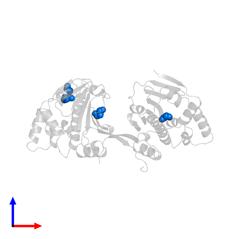 <div class='caption-body'>PDB entry 1ah8 contains 4 copies of GLYCEROL in assembly 1. This small molecule is highlighted and viewed from the front.</div>
