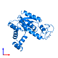 PDB 1ak2 contains 1 copy of Adenylate kinase 2, mitochondrial in assembly 1. This protein is highlighted and viewed from the front.