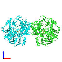 PDB 1aor coloured by chain and viewed from the front.