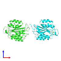 PDB 1aox coloured by chain and viewed from the front.