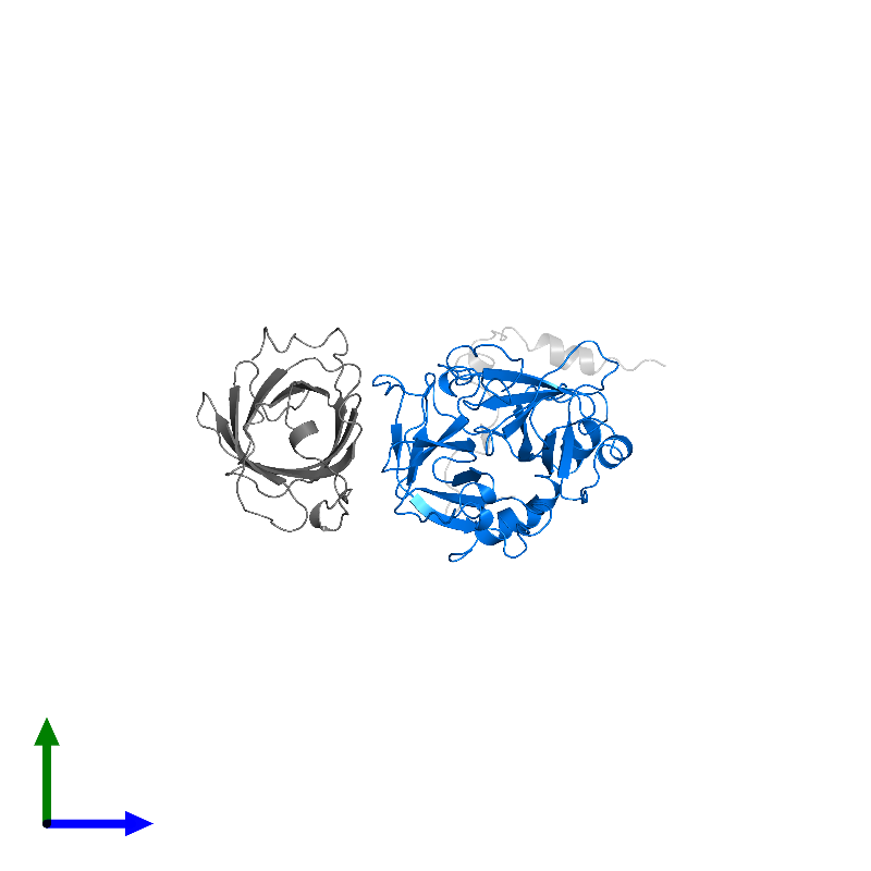 <div class='caption-body'>PDB entry 1avg contains 1 copy of Thrombin heavy chain in assembly 1. This protein is highlighted and viewed from the side.</div>