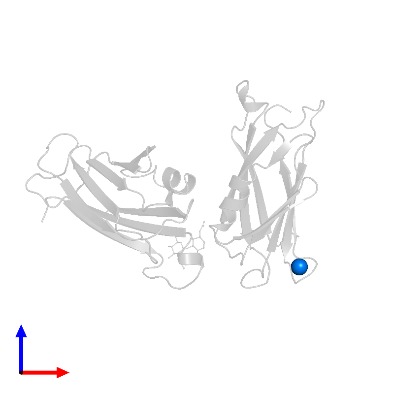 <div class='caption-body'>PDB entry 1ayo contains 1 copy of CALCIUM ION in assembly 1. This small molecule is highlighted and viewed from the front.</div>