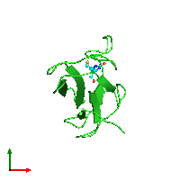 PDB 1bdo coloured by chain and viewed from the top.