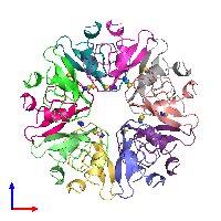 PDB 1bhc coloured by chain and viewed from the front.