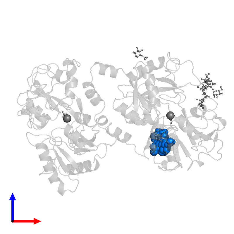 <div class='caption-body'>PDB entry 1blf contains 1 copy of beta-D-mannopyranose-(1-4)-2-acetamido-2-deoxy-beta-D-glucopyranose-(1-4)-2-acetamido-2-deoxy-beta-D-glucopyranose in assembly 1. This small molecule is highlighted and viewed from the front.</div>