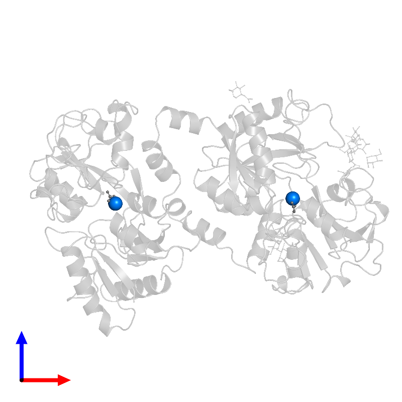 <div class='caption-body'>PDB entry 1blf contains 2 copies of FE (III) ION in assembly 1. This small molecule is highlighted and viewed from the front.</div>