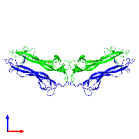 Tetrameric assembly 1 of PDB entry 1bnd coloured by chemically distinct molecules and viewed from the front.