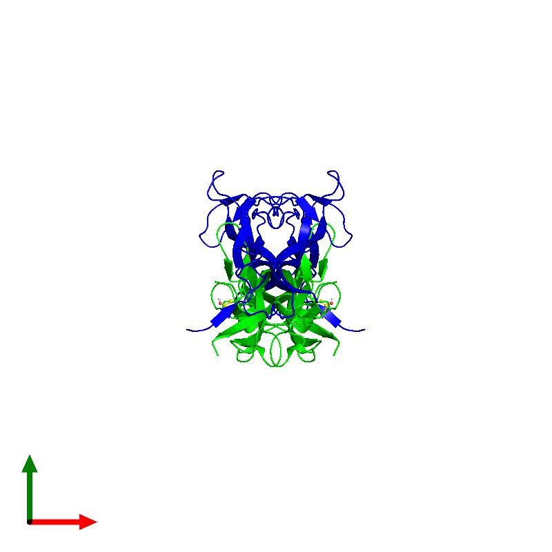 <div class='caption-body'><ul class ='image_legend_ul'> Tetrameric assembly 1 of PDB entry 1bnd coloured by chemically distinct molecules and viewed from the top. This assembly contains:<li class ='image_legend_li'>2 copies of Brain-derived neurotrophic factor</li><li class ='image_legend_li'>2 copies of Neurotrophin-3</li><li class ='image_legend_li'>2 copies of ISOPROPYL ALCOHOL</li></ul></div>