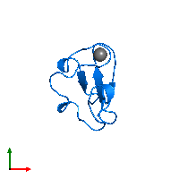 PDB 1brf contains 1 copy of Rubredoxin in assembly 1. This protein is highlighted and viewed from the top.