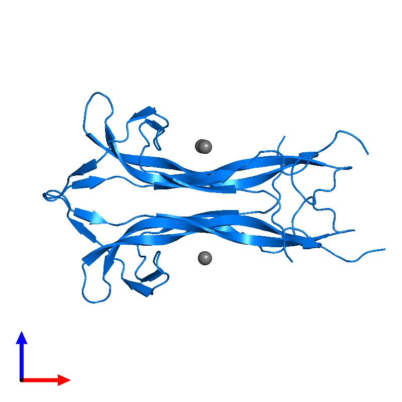 <div class='caption-body'>PDB entry 1btg contains 2 copies of Beta-nerve growth factor in assembly 3. This protein is highlighted and viewed from the front.</div>