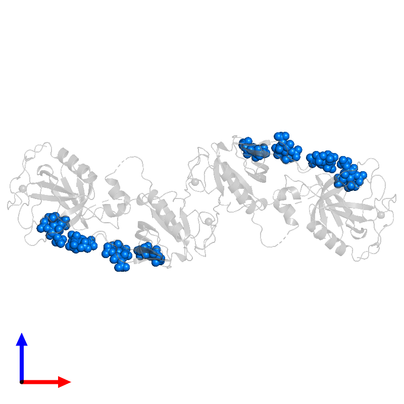 <div class='caption-body'>PDB entry 1bwn contains 8 copies of INOSITOL-(1,3,4,5)-TETRAKISPHOSPHATE in assembly 1. This small molecule is highlighted and viewed from the front.</div>