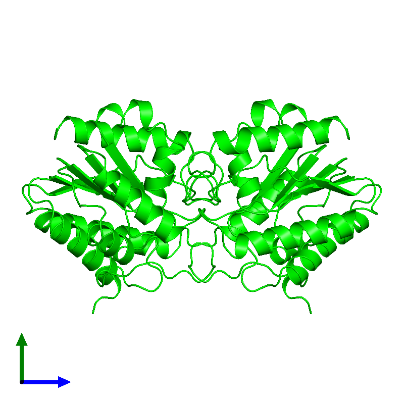 <div class='caption-body'><ul class ='image_legend_ul'> Dimeric assembly 1 of PDB entry 1bwp coloured by chemically distinct molecules and viewed from the side. This assembly contains:<li class ='image_legend_li'>2 copies of Platelet-activating factor acetylhydrolase IB subunit alpha1</li></ul></div>