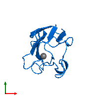 PDB 1byo contains 1 copy of PROTEIN (PLASTOCYANIN) in assembly 1. This protein is highlighted and viewed from the top.