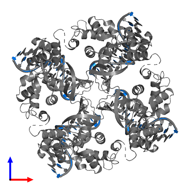 <div class='caption-body'>PDB entry 1c7y contains 4 copies of DNA (5'-D(P*DAP*DAP*DGP*DTP*DTP*DGP*DGP*DGP*DAP*DTP*DTP*DGP*DT)-3') in assembly 1. This DNA molecule is highlighted and viewed from the front.</div>