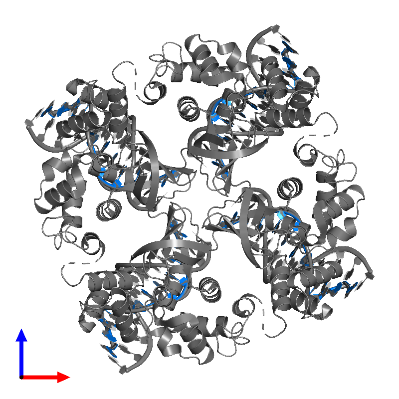 <div class='caption-body'>PDB entry 1c7y contains 4 copies of DNA (5'-D(P*DGP*DGP*DTP*DTP*DAP*DGP*DGP*DGP*DTP*DGP*DAP*DA)-3') in assembly 1. This DNA molecule is highlighted and viewed from the front.</div>