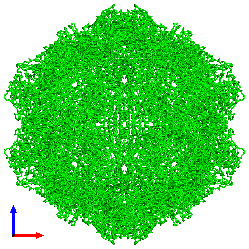 <div class='caption-body'><ul class ='image_legend_ul'> 60-meric assembly 1 of PDB entry 1c8e coloured by chemically distinct molecules and viewed from the front. This assembly contains:<li class ='image_legend_li'>60 copies of Capsid protein VP1</li></ul></div>