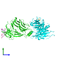 PDB 1c9i coloured by chain and viewed from the side.