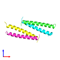 PDB 1ce9 coloured by chain and viewed from the front.