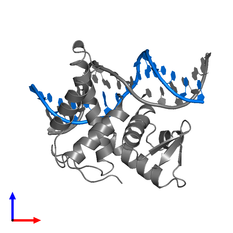 <div class='caption-body'>PDB entry 1cf7 contains 1 copy of DNA (5'-D(*AP*TP*TP*TP*TP*CP*GP*CP*GP*CP*GP*GP*TP*TP*TP*T)-3') in assembly 1. This DNA molecule is highlighted and viewed from the front.</div>