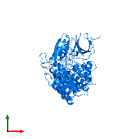PDB 1cki contains 2 copies of Casein kinase I isoform delta in assembly 1. This protein is highlighted and viewed from the top.