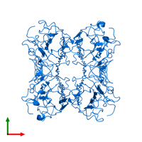 PDB 1cn1 contains 4 copies of Concanavalin-A, 2nd part in assembly 1. This protein is highlighted and viewed from the top.