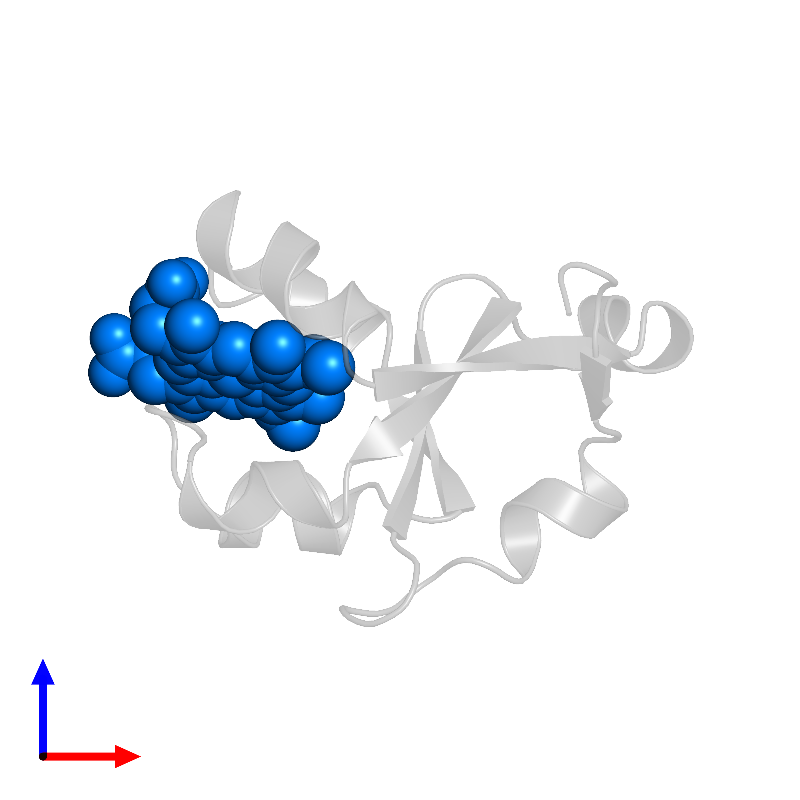 <div class='caption-body'>PDB entry 1cyo contains 1 copy of PROTOPORPHYRIN IX CONTAINING FE in assembly 1. This small molecule is highlighted and viewed from the front.</div>