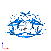 PDB 1d4y contains 2 copies of Protease in assembly 1. This protein is highlighted and viewed from the front.