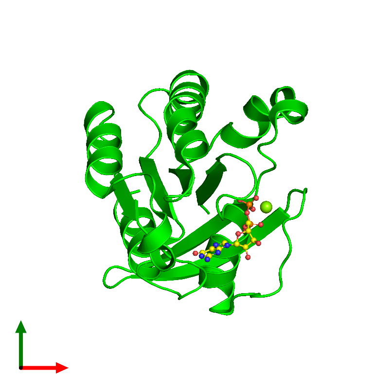 <div class='caption-body'><ul class ='image_legend_ul'>The deposited structure of PDB entry 1d5c coloured by chemically distinct molecules and viewed from the top. The entry contains: <li class ='image_legend_li'>1 copy of GTPase (Rab6)</li><li class ='image_legend_li'>2 non-polymeric entities<ul class ='image_legend_ul'><li class ='image_legend_li'>1 copy of MAGNESIUM ION</li><li class ='image_legend_li'>1 copy of GUANOSINE-5'-DIPHOSPHATE</li></ul></li></div>