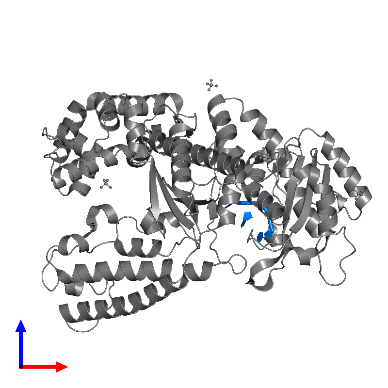 <div class='caption-body'>PDB entry 1d9f contains 1 copy of DNA/RNA (5'-D(*TP*TP)-R(*(U31)P)-D(*T)-3') in assembly 1. This DNA/RNA hybrid molecule is highlighted and viewed from the front.</div>