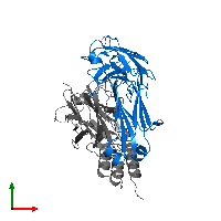 PDB 1dee contains 1 copy of IGM RF 2A2 in assembly 2. This protein is highlighted and viewed from the top.