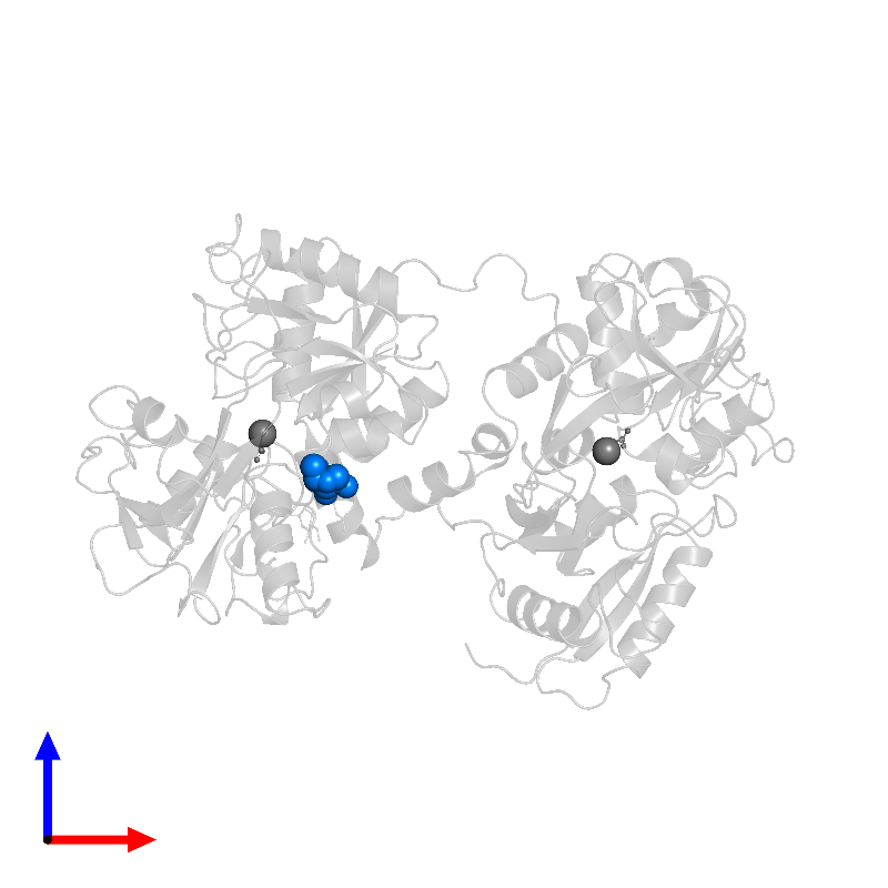 <div class='caption-body'>PDB entry 1dot contains 1 copy of alpha-L-fucopyranose in assembly 1. This small molecule is highlighted and viewed from the front.</div>