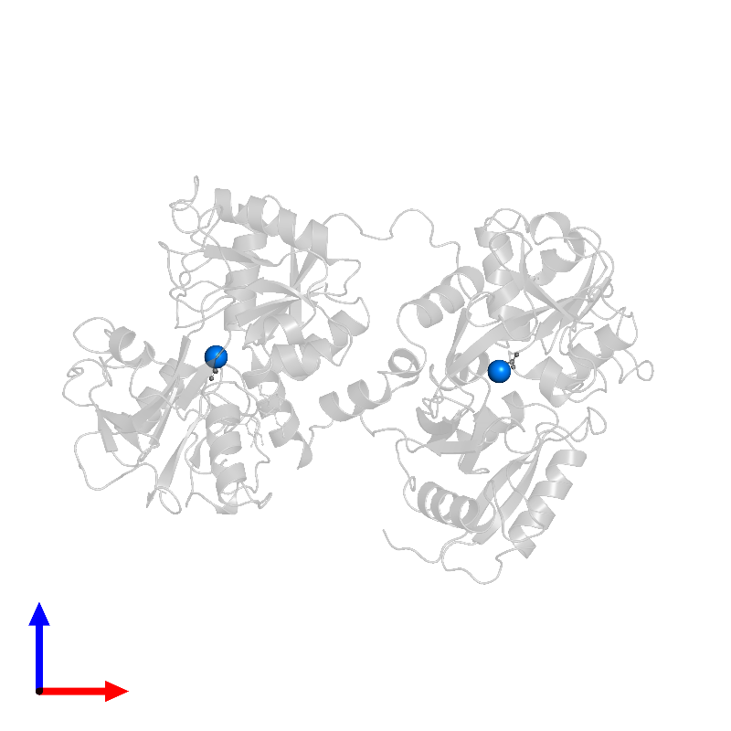 <div class='caption-body'>PDB entry 1dot contains 2 copies of FE (III) ION in assembly 1. This small molecule is highlighted and viewed from the front.</div>