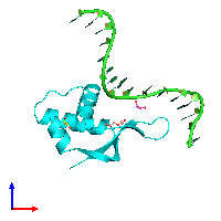 PDB 1dp7 coloured by chain and viewed from the front.