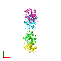 PDB 1du4 coloured by chain and viewed from the top.