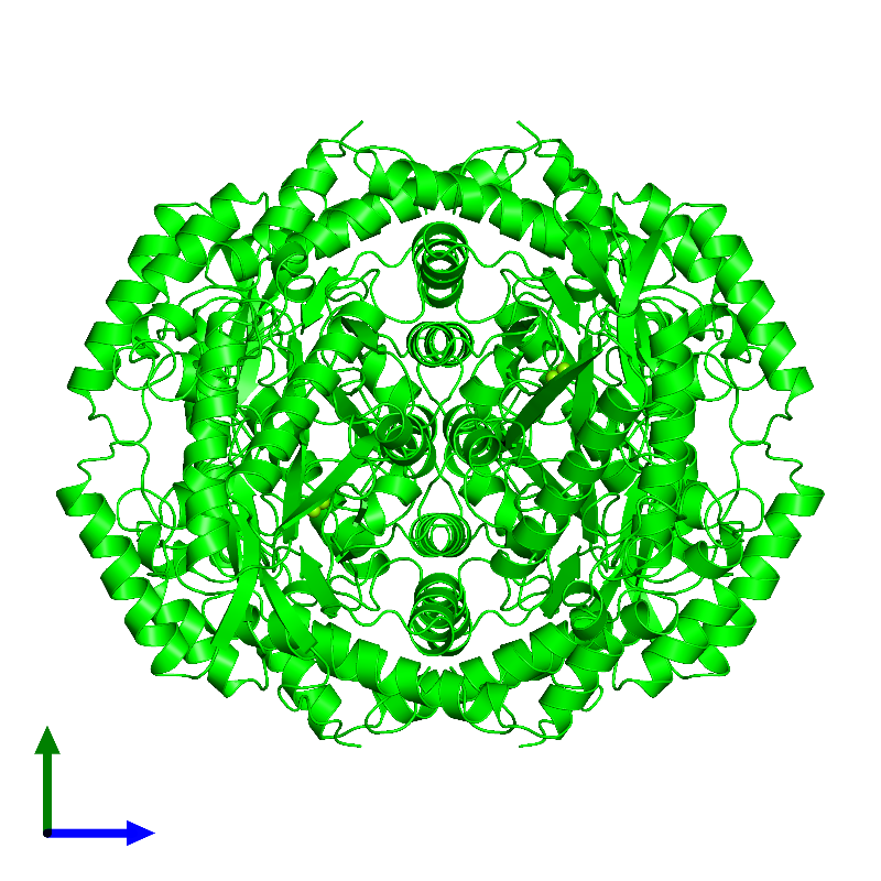 <div class='caption-body'><ul class ='image_legend_ul'> Tetrameric assembly 1 of PDB entry 1dxi coloured by chemically distinct molecules and viewed from the side. This assembly contains:<li class ='image_legend_li'>4 copies of Xylose isomerase</li><li class ='image_legend_li'>8 copies of MAGNESIUM ION</li></ul></div>