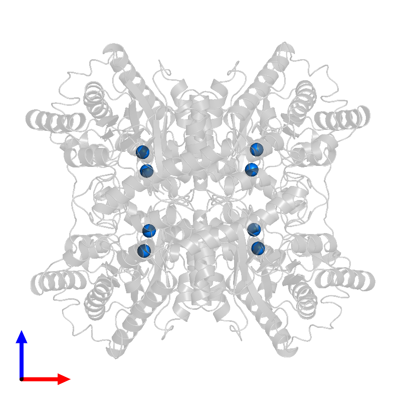 <div class='caption-body'>PDB entry 1dxi contains 8 copies of MAGNESIUM ION in assembly 1. This small molecule is highlighted and viewed from the front.</div>