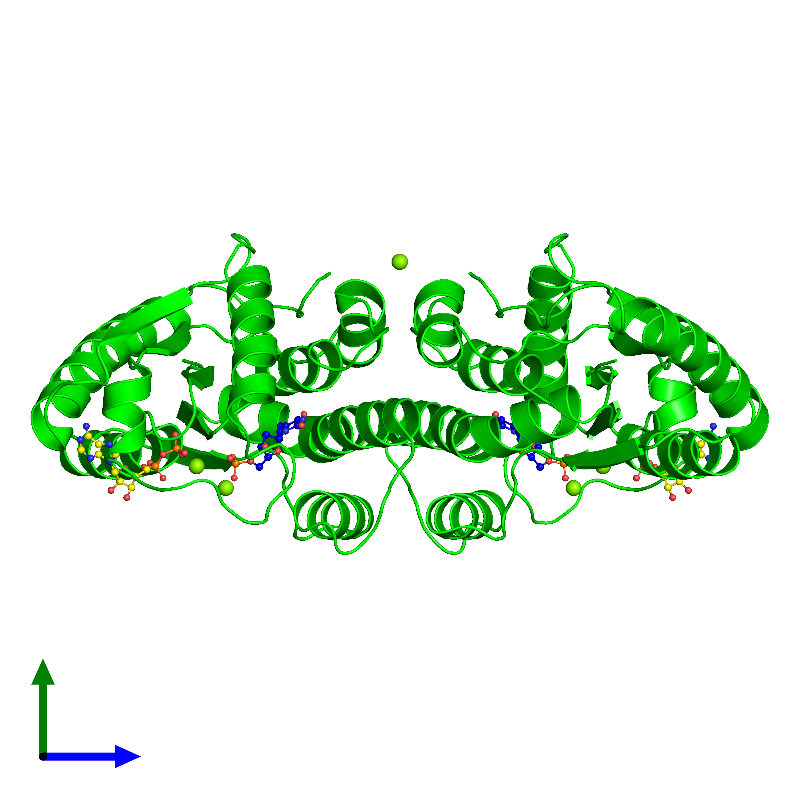 <div class='caption-body'><ul class ='image_legend_ul'> Dimeric assembly 1 of PDB entry 1e2d coloured by chemically distinct molecules and viewed from the side. This assembly contains:<li class ='image_legend_li'>2 copies of Thymidylate kinase</li><li class ='image_legend_li'>2 copies of THYMIDINE-5'-PHOSPHATE</li><li class ='image_legend_li'>2 copies of ADENOSINE-5'-DIPHOSPHATE</li><li class ='image_legend_li'>6 copies of MAGNESIUM ION</li></ul></div>