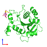 PDB 1e5k coloured by chain and viewed from the front.