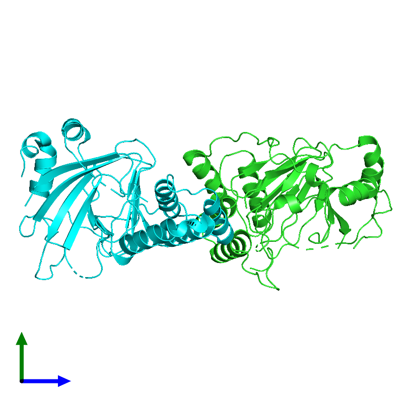 <div class='caption-body'><ul class ='image_legend_ul'>The deposited structure of PDB entry 1e5r coloured by chain and viewed from the side. The entry contains: <li class ='image_legend_li'>2 copies of PROLINE OXIDASE</li><li class ='image_legend_li'>There are no non-polymeric molecules</li></ul></li></ul></li></div>