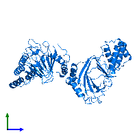 PDB 1e5r contains 4 copies of PROLINE OXIDASE in assembly 1. This protein is highlighted and viewed from the side.