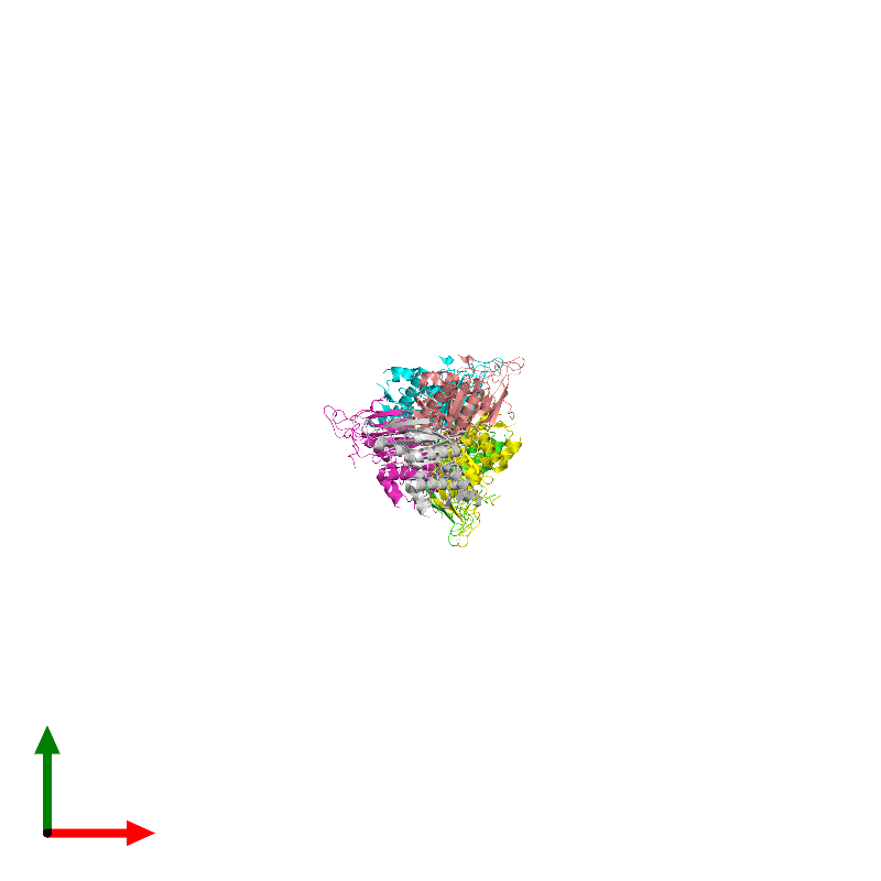 <div class='caption-body'><ul class ='image_legend_ul'>The deposited structure of PDB entry 1e69 coloured by chain and viewed from the top. The entry contains: <li class ='image_legend_li'>6 copies of Chromosome partition protein Smc</li><li class ='image_legend_li'>There are no non-polymeric molecules</li></ul></li></ul></li></div>