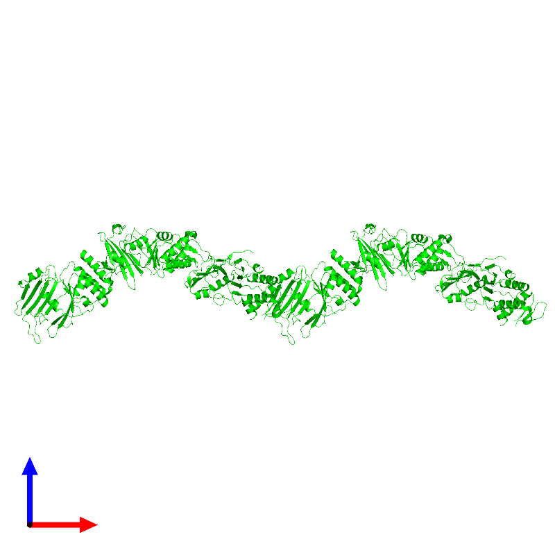 <div class='caption-body'><ul class ='image_legend_ul'>The deposited structure of PDB entry 1e69 coloured by chemically distinct molecules and viewed from the front. The entry contains: <li class ='image_legend_li'>6 copies of Chromosome partition protein Smc</li><li class ='image_legend_li'>There are no non-polymeric molecules</li></ul></li></ul></li></div>